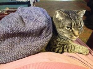 Fanny modeling Flora's cap
